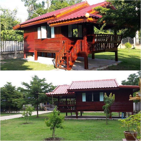 Mango-garden
