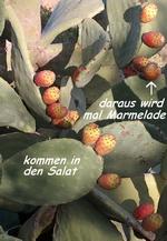 Löffelkakteen mit Früchten auf der Finca Mikaela an der Costa del Sol in der Provinz Málaga Andalusien Spanien