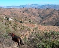 James Bond auf dem Grundstück der Finca Mikaela in der Sierra Hacho zwischen Alora und Almogia - Provinz Málaga -  Andalusien - Spanien