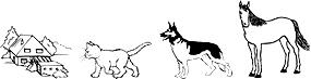 Haussitter Housesitter Haushüter Tiersitter Tierbetreuung Hundesitter Kanaren Spanien