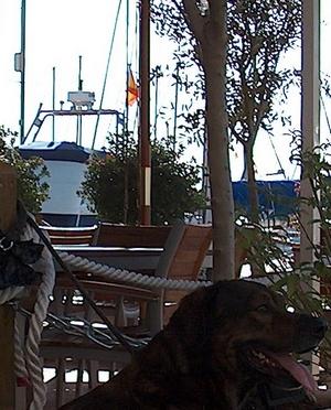 James Bond im Yachthafen von Fuengirola an der Costa del Sol in der Provinz Málaga Andalusien Spanien
