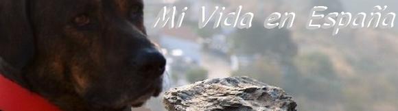 James Bond und sein Leben in Spanien Provinz Málaga Andalusien Spanien