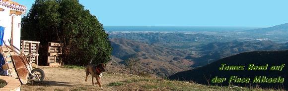 James Bond auf der Finca Mikaela zwischen Almogia und Alora Andalusien Spanien