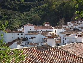 James Bond Hund - Das weisse Dorf - Benadalid - Provinz Málaga - Andalusien - Spanien