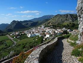 James Bond Hund - Das weisse Dorf - Benaocaz - Provinz Cádiz - Andalusien - Spanien