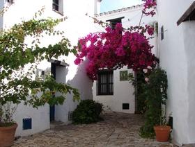 James Bond Hund - Das weisse Dorf - Castellar de la Frontera - Provinz Cádiz - Andalusien - Spanien