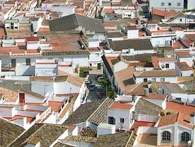 James Bond Hund - Das weisse Dorf - Espera - Provinz Cádiz - Andalusien - Spanien