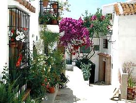James Bond Hund - Das weisse Dorf - Gaucín - Provinz Málaga - Andalusien - Spanien