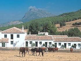 James Bond im Hotel El Horcajo - Montecorto Provinz Cadiz Andalusien Spanien