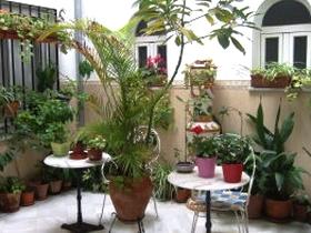 Hotel-Hostal Alcazar - Córdoba - Andalusien - Spanien