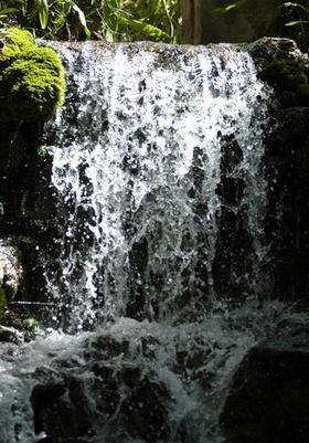 James Bond am Wasserfall im Naturschutzgebiet Sierra de las Nieves Provinz Malaga Andalusien Spanien