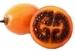 Tamarillo Baumtomate - Früchte Finca-Villa Sol y Fruta Jete Provinz Granada Andalusien Spanien verkaufen