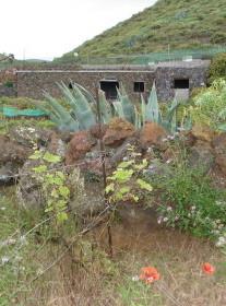 Landhaus auf der Insel El Hierro - Kanaren - Spanien zu verkaufen