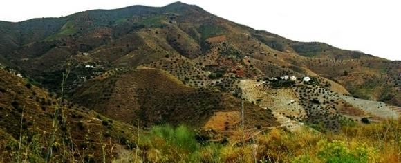 La Herradura Verkauf 10.000 m² Grundstück Provinz Granada an der Costa Tropical in Andalusien