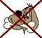 keine Hunde im gemieteten Ferienhaus auf der kanarischen Insel Fuerteventura