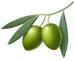 Oliven - Früchte Cortijoo-Finca Sol Jete Provinz Granada Andalusien Spanien verkaufen