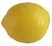 Zitronen - Früchte Cortijoo-Finca Sol Jete Provinz Granada Andalusien Spanien verkaufen