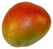 Mangos - Früchte Cortijoo-Finca Sol Jete Provinz Granada Andalusien Spanien verkaufen