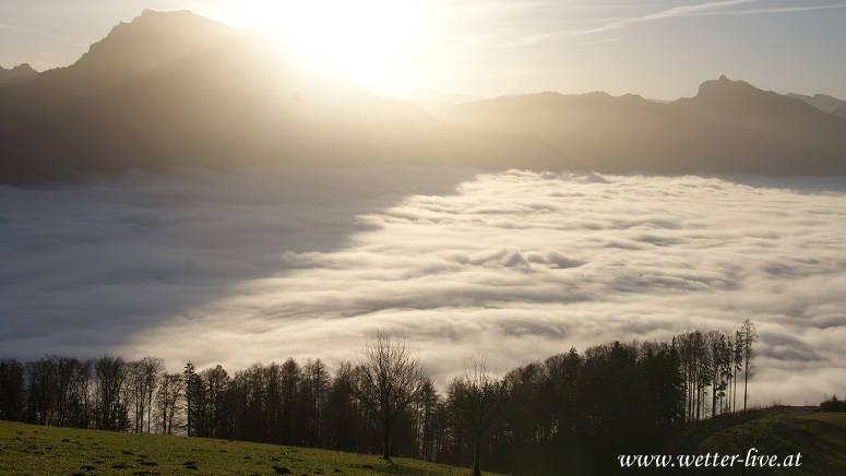 An den Beitrag angehängtes Bild: http://file1.npage.de/000777/38/bilder/7.11.jpg