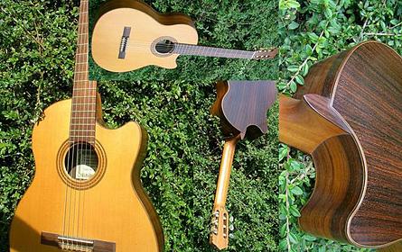 gitarrenbaumeister mathias heerwagen werkstatt und fachgesch ft f r gitarre und technik. Black Bedroom Furniture Sets. Home Design Ideas