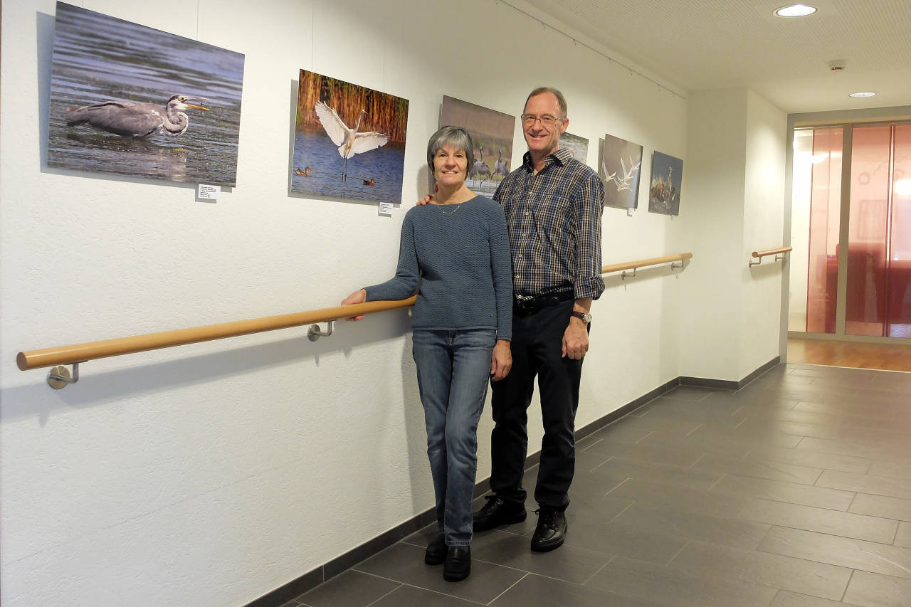 27 Bilder im Format 40x60cm sind ausgestellt