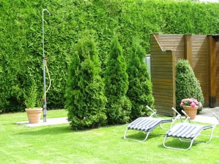 Sauna mit Gartendusche beim Ferienhaus Mariechen in Holtgast