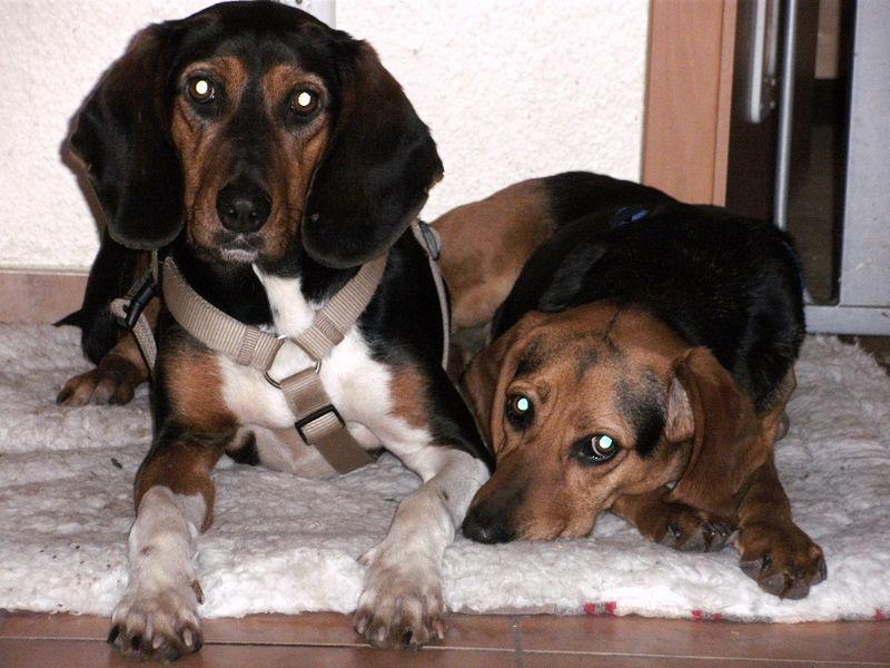Cara und Lina