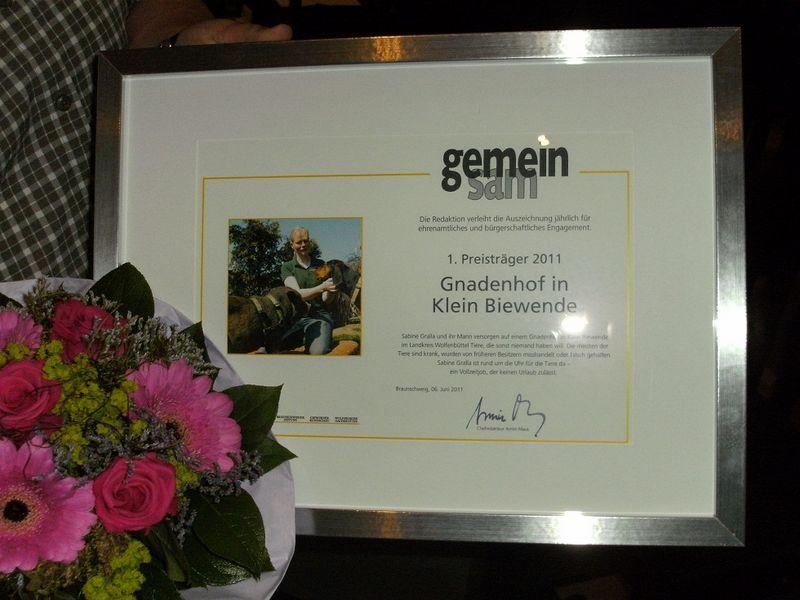 Ehrenamtspreis-Urkunde