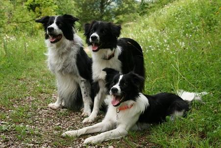 Bess, Val & Ashley