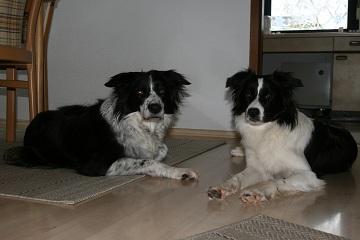 Bess & Ashley