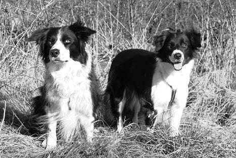 Bess & Val