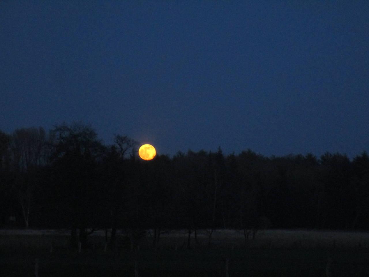 Mondaufgang vor der Haustür