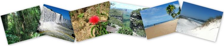 BrasilienInfo-BrasilienTipps-BrasilienTouren-Reiseleitung Brasilien - Suedamerika - Regenwald-Nationalparks-Wasserfaelle-Straende-Sandduenen