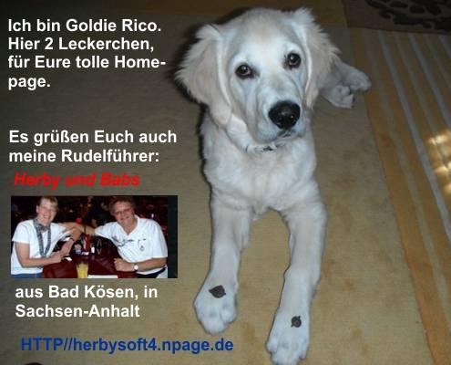 An den Beitrag angehängtes Bild: http://file1.npage.de/002860/46/bilder/rico_2a.jpg