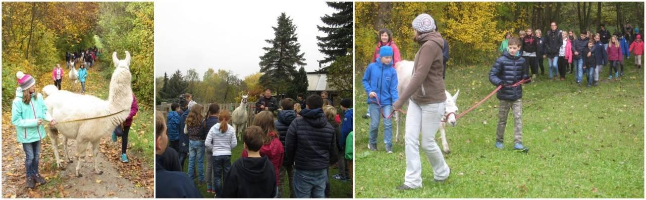 Schulwandertag Wandertag Thüringen Soziales Lernen