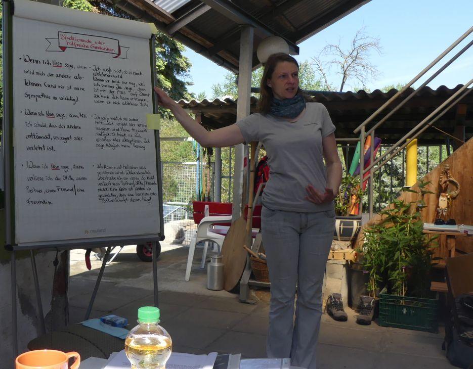 Tiergestütztes Seminar Alpaka