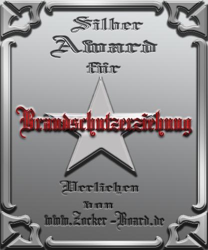 Silber Award Brandschutzerziehung