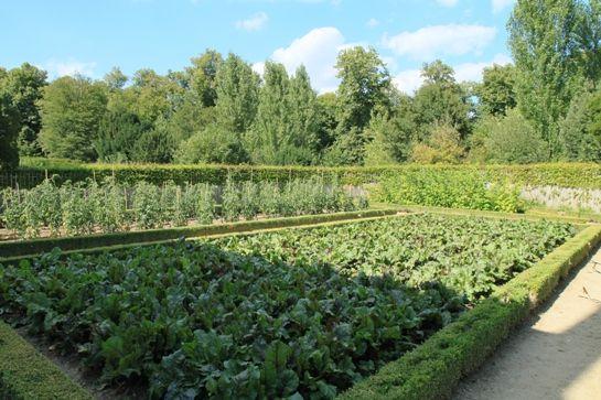 Gemüsegarten, Juli 2010 -- © 2010 by J.S.