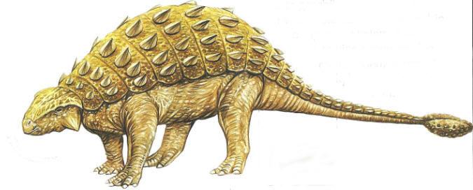 Gallery For > Pinacosaurus Dinosaurs