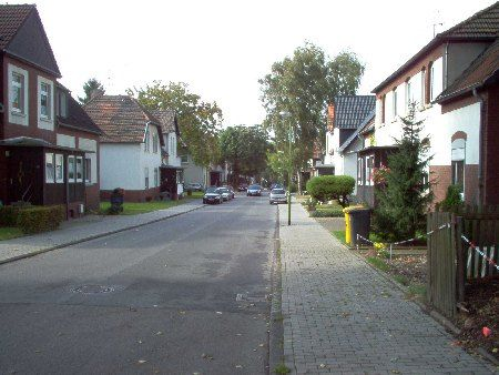 Stiftsdamenwald