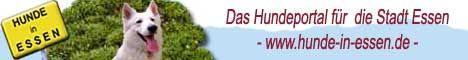 Banner Hunde in Essen