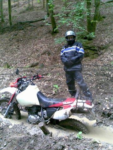 TT im Wald