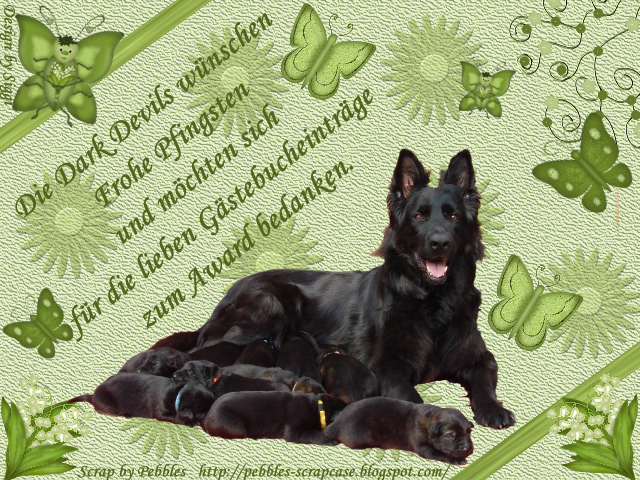 An den Beitrag angehängtes Bild: http://file1.npage.de/004886/15/bilder/dankeaward.png