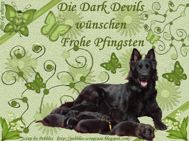An den Beitrag angehängtes Bild: http://file1.npage.de/004886/15/bilder/pfingsten2013.png