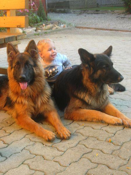 Akira,Wendy und Klein Fabian