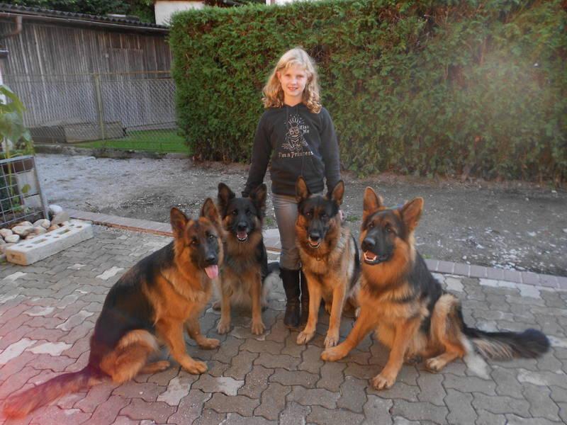 Wendy,Akira,LISA,Carlos,Berny