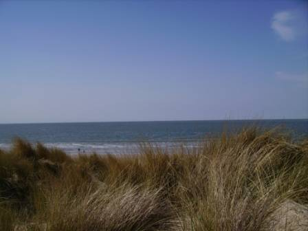 Strand von Zuid-Zuid-West, Renesse