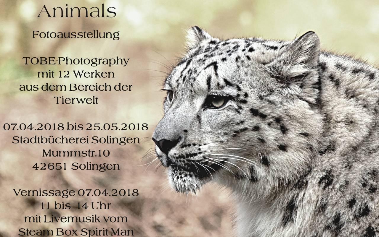 Fotoausstellung Vernissage am 07.04.2017 Stadtbücherei Solingen       Thema: Animals  /  Tiere