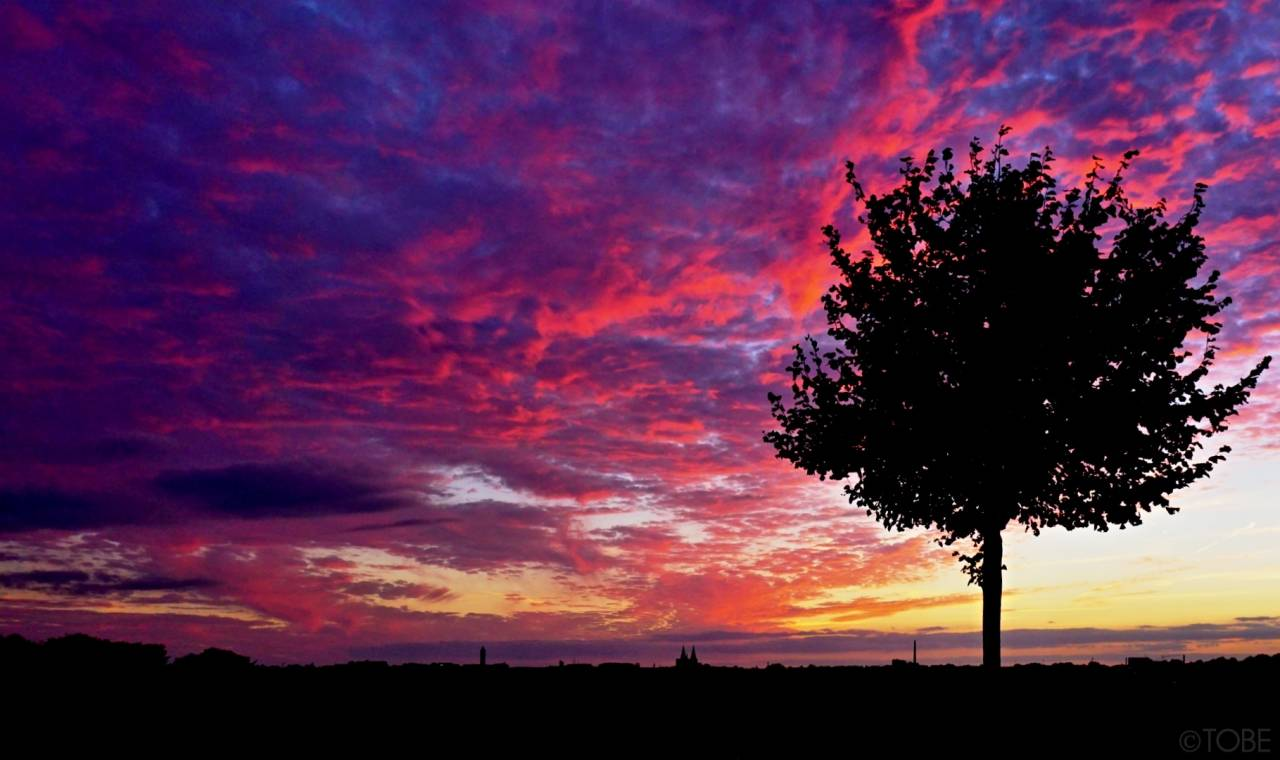 Sonnenuntergang Solingen Teegarten  Sunset Cloud