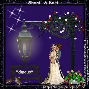 Schmusestübchen Shani & Baci